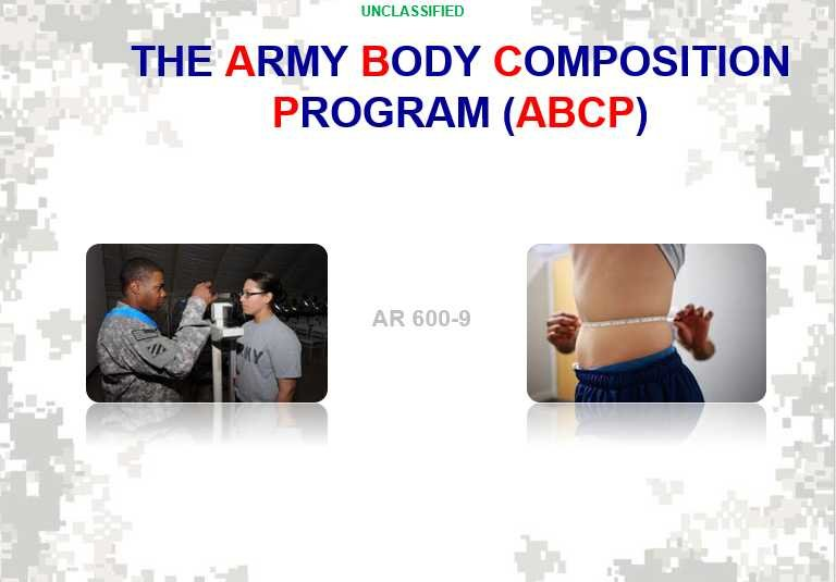 Army Body Fat Program Images