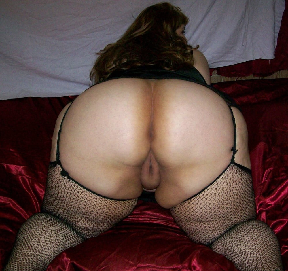 Bbw Ass And Pussy Pics