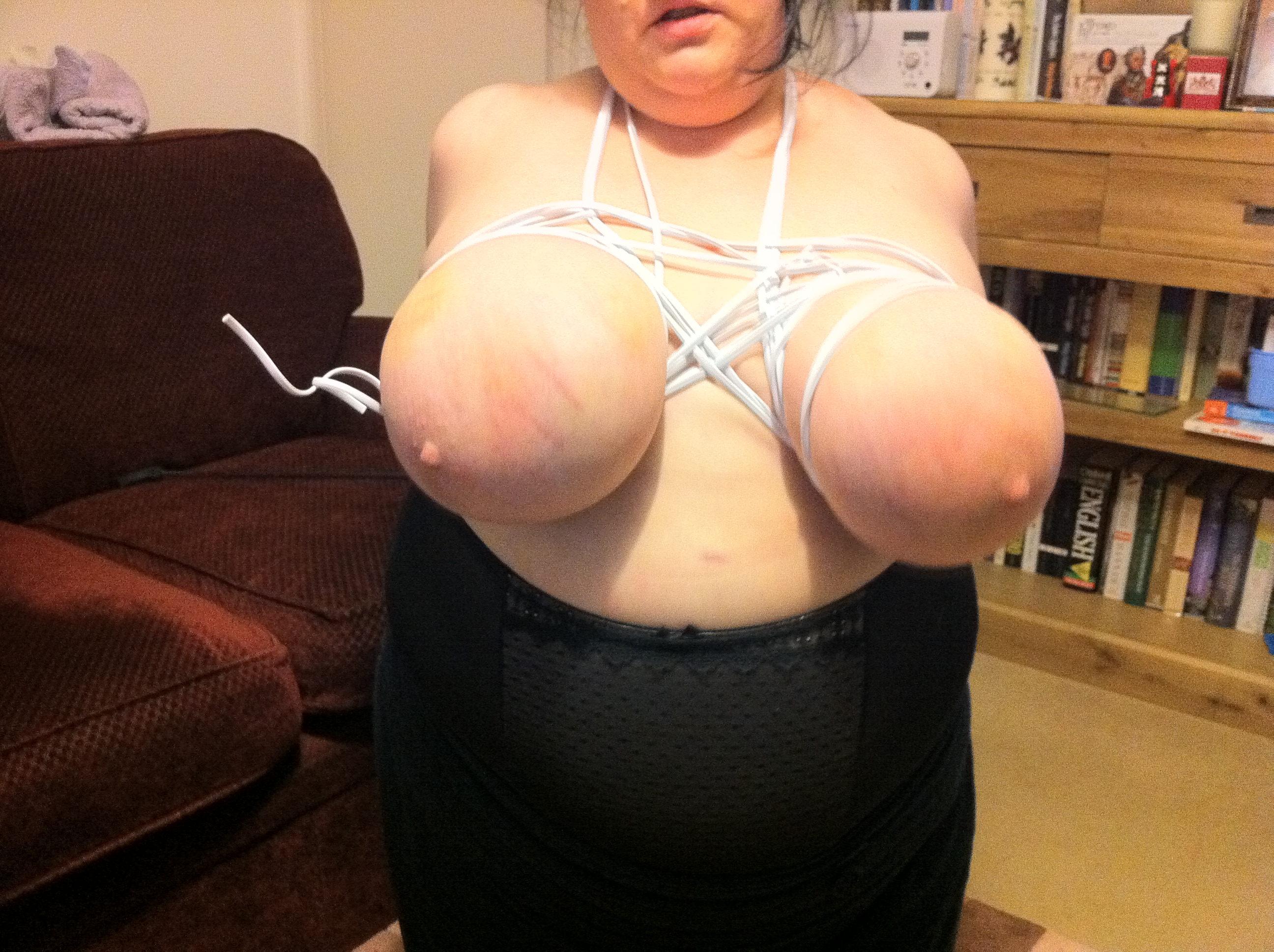 Bbw Tied Tits Pictures