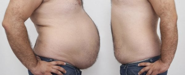 Body Fat And Weight Loss Images
