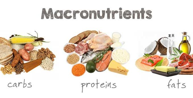 Carbohydrates Proteins Fat Images
