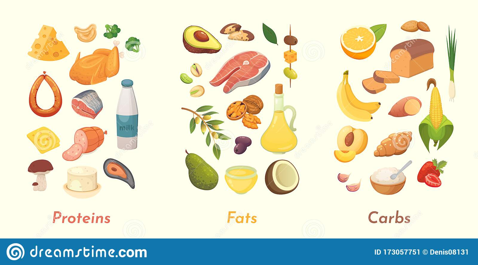 Carbohydrates Proteins Fat Scenes