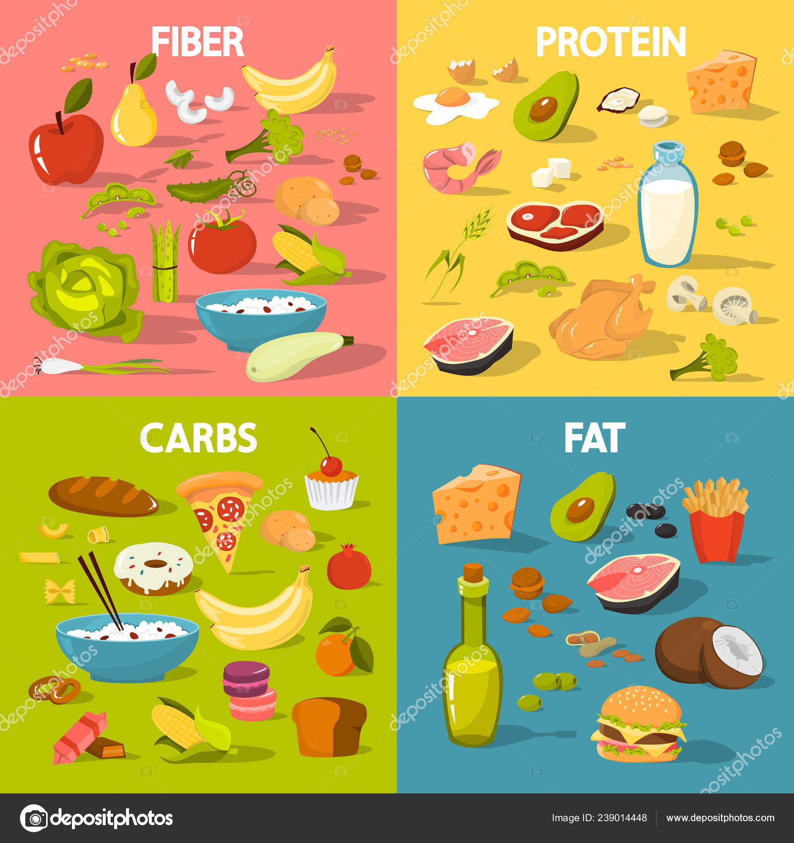 Carbohydrates Proteins Fat Pic