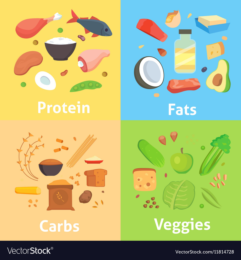 Carbohydrates Proteins Fat Pictures