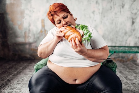 Fat Chicks Eating Food Png