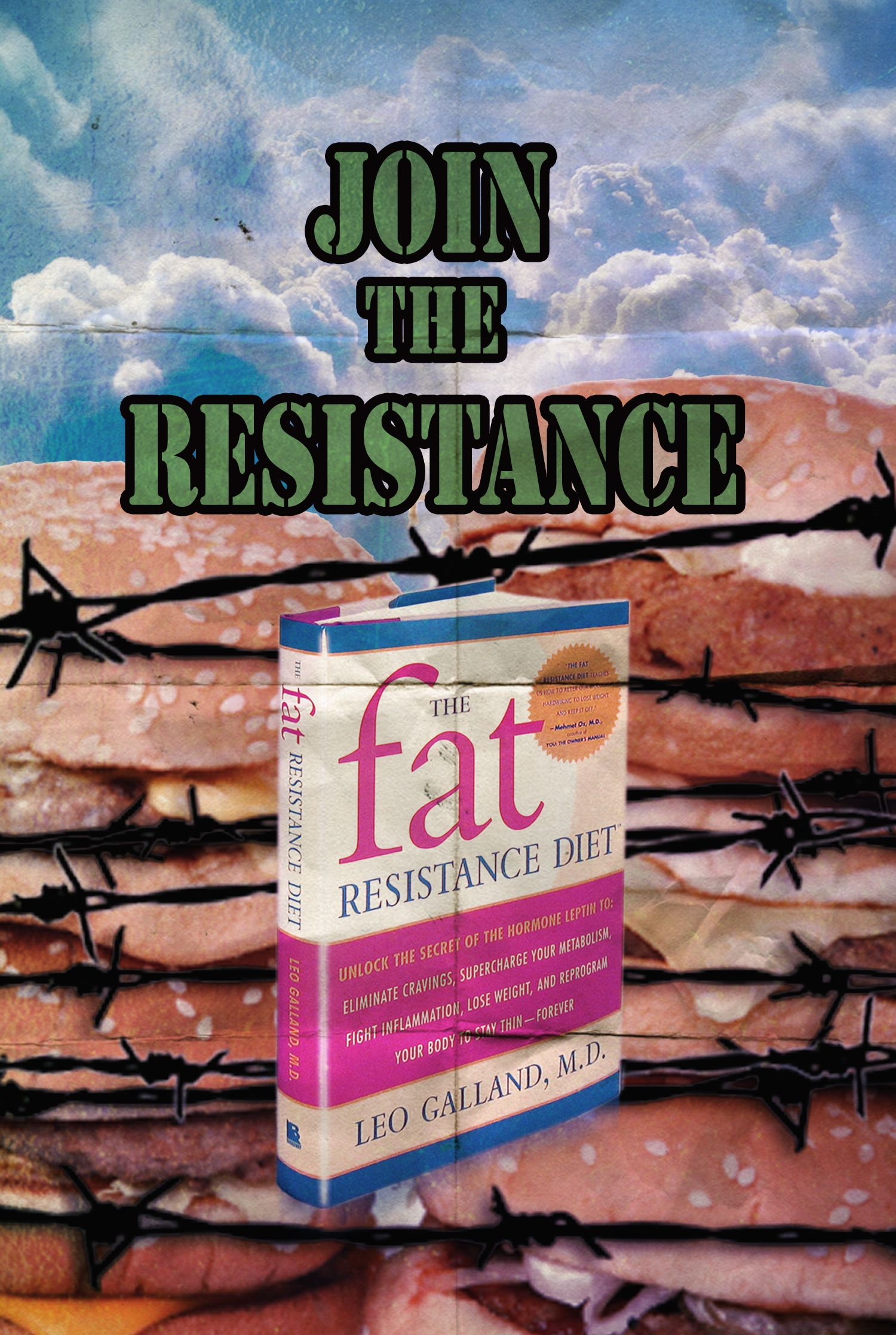 Fat Resistence Diet Png