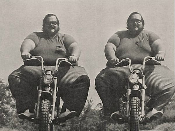 Fat Twins Pictures Gif