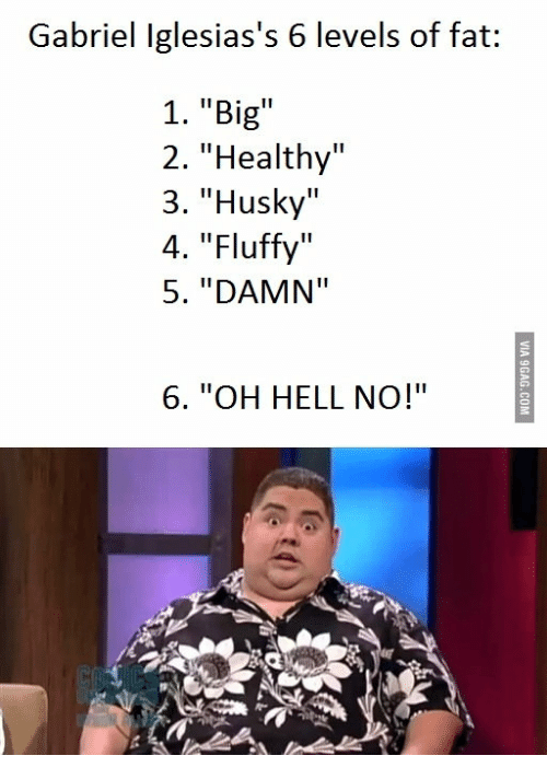 Five Stages Of Fat Scenes