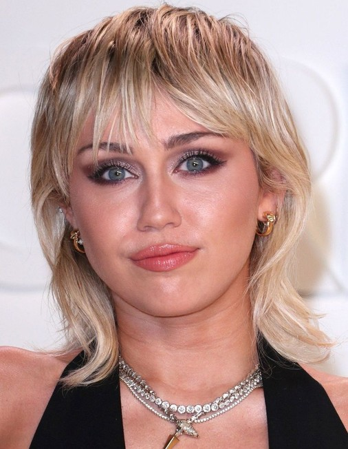 Miley Cyrus Filmography Png