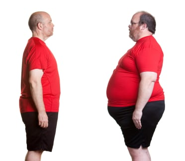 Why Adults Hold Fat Weight Png